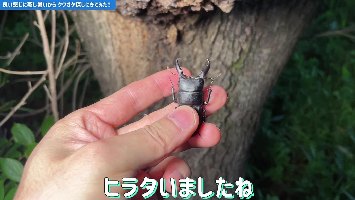 Kuwagata2001 5 04
